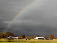 A rainbow is visible above a horse farm in Montgomery on an unseasonable warm November afternoon. Nov. 29, 2011.