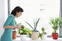 Businesswoman spraying pot plants by window