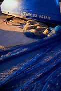 Boat yards, Essaouira
