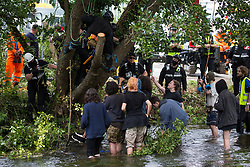 Denham, UK. 24 July, 2020. Environmental activists from HS2 Rebellion try to protect an ancient alder tree from destruction by tree surgeons working with the National Eviction Team in connection with works for the HS2 high-speed rail link in Denham Country Park. A large policing operation involving the Metropolitan Police, Thames Valley Police, City of London Police and Hampshire Police as well as the National Eviction Team was put in place to enable HS2 to remove the tree.