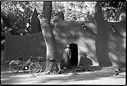 Life is like riding a bicycle; you do not fall off unless you stop pedaling.  Sierra Leonean proverb<br />