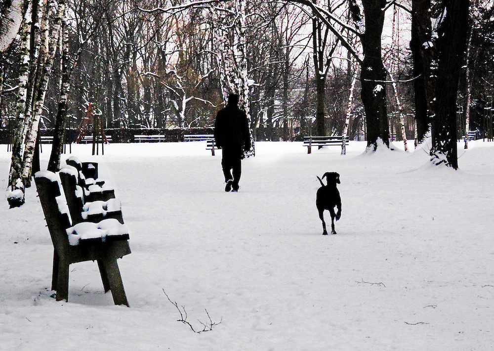 A man followed by his black labrador walks by a row of snow-covered park benches in the Petrin Park, Prague.  Snow on the ground about 6 inches deep.  Forest edge beyond the end of the footpath.