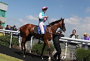 Jockey George Baker on Marmot in the parade ring before the 3.20 race at Brighton Racecourse, Brighton & Hove, United Kingdom on 10 June 2015. Photo by Bennett Dean.