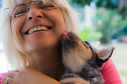 Woman being licked on the face by a Red Heeler Australian Cattle Dog puppy, Brisbane, Queensland, Australia
