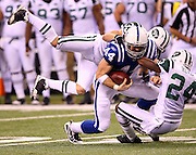 Indianapolis Colts tight end Dallas Clark (44) catches a third quarter while double covered by New York Jets safety Jim Leonhard (36) and Jets cornerback Darrelle Revis (24) during the AFC Championship football game against the New York Jets, January 24, 2010 in Indianapolis, Indiana. The Colts won the game 30-17. ©Paul Anthony Spinelli