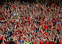 Wales supporters celebrating. esultanza tifosi<br /> Lille 01-07-2016 Stade Pierre Mauroy Football Euro2016 Wales - Belgium / Galles - Belgio <br /> Quarter-finals. Foto Matteo Ciambelli / Insidefoto