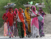 Women returning from work in Rajasthan, India.