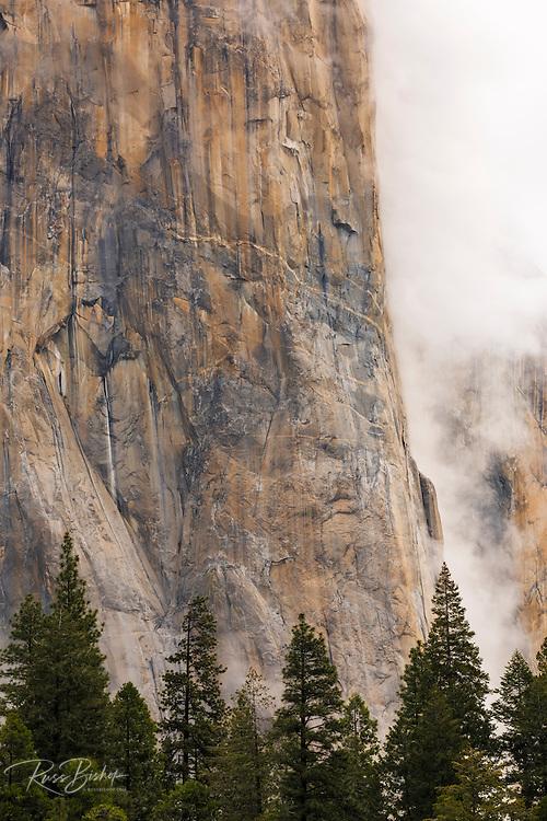 El Capitan and clearing storm, Yosemite National Park, California