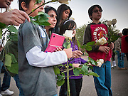 "15 JANUARY 2011 - TUCSON, AZ: A family brings roses to the memorial on the lawn in front of the University Medical Center in Tucson, AZ, Saturday, January 15. The memorial has been growing since the mass shooting last week. Six people were killed and 14 injured in the shooting spree at a ""Congress on Your Corner"" event hosted by Congresswoman Gabrielle Giffords at a Safeway grocery store in north Tucson on January 8. Congresswoman Giffords, the intended target of the attack, was shot in the head and seriously injured in the attack. She is hospitalized at UMC. The alleged gunman, Jared Lee Loughner, was wrestled to the ground by bystanders when he stopped shooting to reload the Glock 19 semi-automatic pistol. Loughner is currently in federal custody at a medium security prison near Phoenix.  Photo by Jack Kurtz"