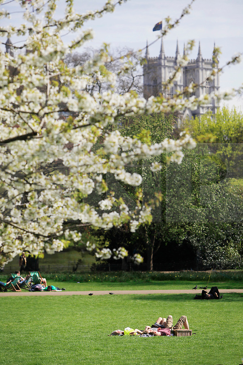 © Licensed to London News Pictures 24/04/2013.A couple relax during the warm weather, with Westminister Abbey in the background of St James Park, central London..London, UK.Photo credit: Anna Branthwaite/LNP