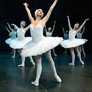 The St Petersburg Ballet Theatre performing SWAN LAKE at The Coliseum London UK  on 22.08.2018  Members of the Company