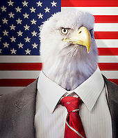Head of an eagle on a businessman's body in front of American Stars and Stripes flag