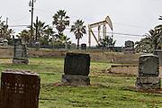 the Oil Fields of LA, California.