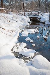 Winter Wonderland in the Central Park North woods