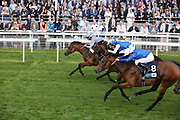 MAIN DESIRE ridden by jockey Daniel Tudhope and trained by Michael Bell winning The Listed British Stallion Studs EBF Westow Stakes over 5f (£50,000) atat the York Dante Meeting at York Racecourse, York, United Kingdom on 17 May 2018. Picture by Mick Atkins.