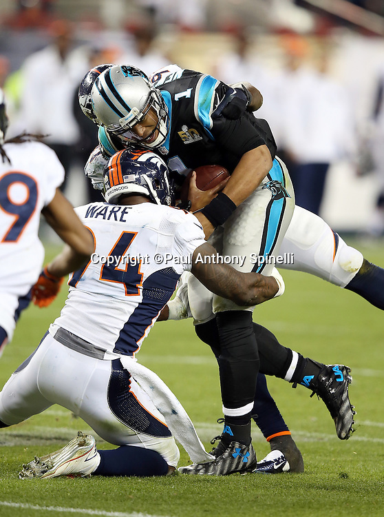 Denver Broncos outside linebacker DeMarcus Ware (94) stuffs Carolina Panthers quarterback Cam Newton (1) on a third quarter keeper during the NFL Super Bowl 50 football game against the Carolina Panthers on Sunday, Feb. 7, 2016 in Santa Clara, Calif. The Broncos won the game 24-10. (©Paul Anthony Spinelli)