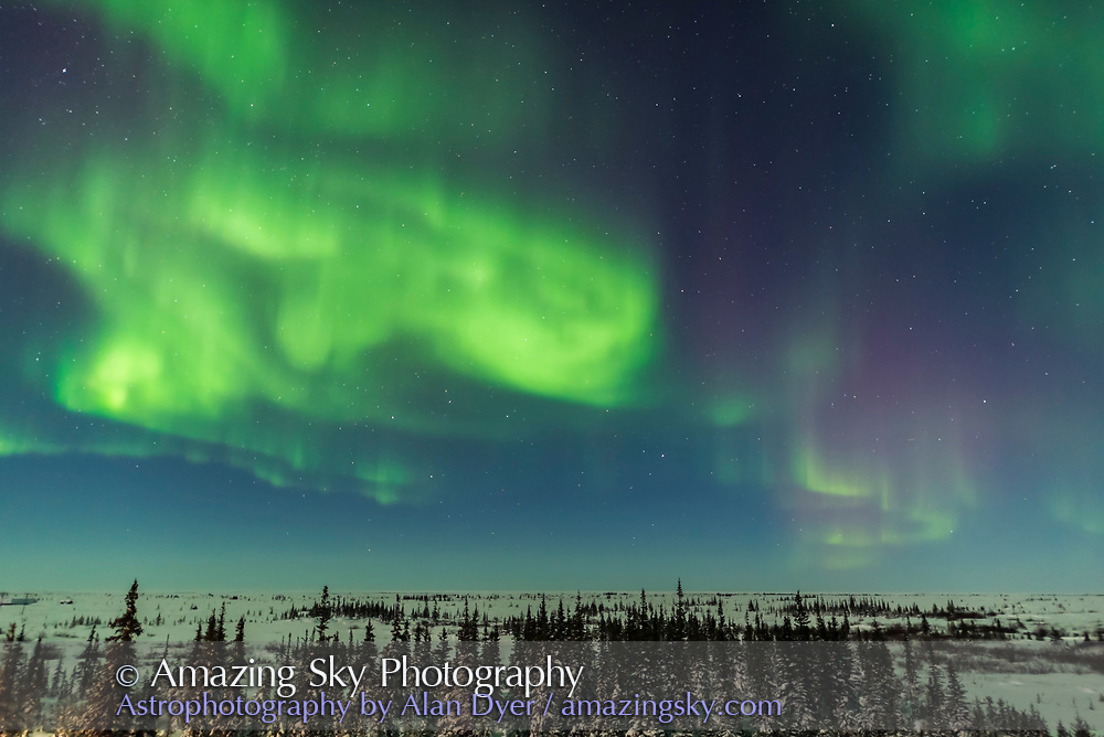 A superb display of aurora borealis seen on March 14, 2016 when it reached Level 5 storm levels. This was later in the night before the major substorm, looking north with illumination from the 6-day-old Moon. <br /> <br /> This was seen and shot from the Churchill Northern Studies Center, Churchill, Manitoba, with this image being one frame from some 2000 I shot this night as part of rapid-cadence time-lapse sequences. Frames were shot at f/1.4 with the Sigma 20mm lens and Nikon D750 using 1 to 2 second exposures.