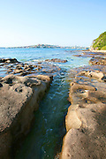 Rocks & Reefs are a part of Sydney Harbour