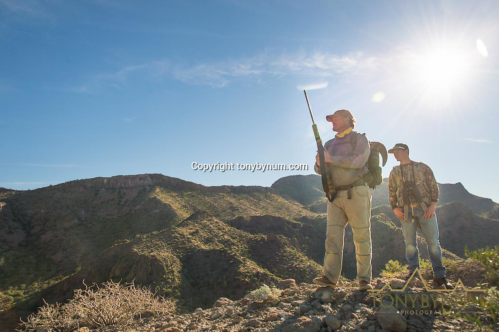 desert sheep hunting, sonora, mexico