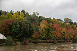 November 1, 2018 - Turin, Piedmont, Italy - Some colorful autumnal trees next to the Po river. Impressions of the Fall in the capital of Piedmont Turin in Northern Italy, on 1st November 2018. (Credit Image: © Alexander Pohl/NurPhoto via ZUMA Press)