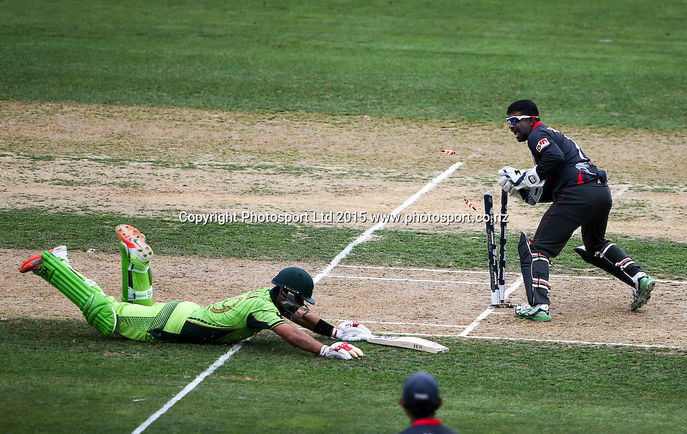 Pakistan's Ahmad Shahzad is run out for 92. Pakistan v UAE, McLean Park, Napier, New Zealand. Wednesday, 04 March, 2015. Copyright photo: John Cowpland / www.photosport.co.nz