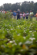Charlie, of Dayspring Farm, helps train extension agents and farmers from all over Virginia in organic and sustainable farming practices. Charlie also teaches a class at William and Mary and hosts numerous educational programs at his farm. Dayspring Farm also operates a CSA.