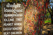 "30 JANUARY 2013 - CHEOUNG EK, CAMBODIA: The so called ""Killing Tree"" in the Choeung Ek Killing Fields. The bracelets, a Buddhist tradition, are left at the tree by tourists and Cambodian visitors to the Killing Fields. Choeung Ek is a former orchard and Chinese cemetery about 17 km south of Phnom Penh, Cambodia. It is the best-known of the ""Killing Fields"", where the Khmer Rouge regime executed over one million people between 1975 and 1979. Mass graves containing 8,895 bodies were discovered at Choeung Ek after the fall of the Khmer Rouge regime. Many of the dead were former political prisoners who were kept by the Khmer Rouge in their Tuol Sleng detention center, a former high school in Phnom Penh.      PHOTO BY JACK KURTZ"