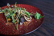 The Hearth Roasted Fennel dish consists of fennel, duck vinaigrette, dried citrus and garlic mustard flower at Roister, a restaurant in the Fulton Market neighborhood of Chicago, Ill., on Thursday, May 12, 2016. Nathan Weber for New York Times