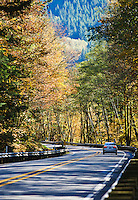 The changing colors of fall on Highway 2, Washington state, USA.