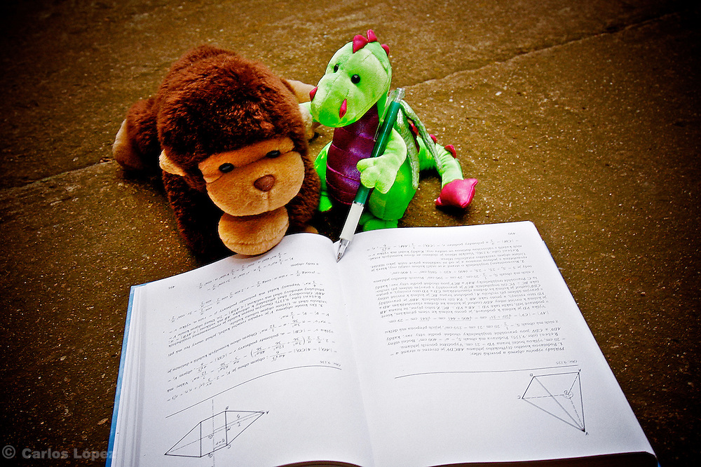 A dragon (Milusk and a monkey Jimmy ) working together to solve a problem.