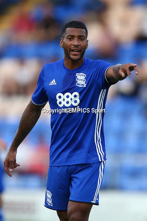 Birmingham City's David Davis