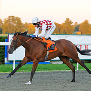 Inka Surprise and Jim Crowley winning the 7.20 race
