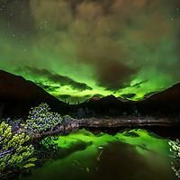 Aurora,Northern Lights