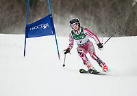 Lakes Region GS Alpine Championships at Proctor.  ©2019 Karen Bobotas Photographer
