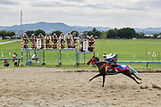 Minami-Soma, Fukushima prefecture, July 25 2015 - Horse race during Nomaoi festival.<br /> The Soma nomaoi is said to be a 1000-year-old traditional festival. It was held in 2011, a few months after the nuclear disaster, but only a few local horses were available.