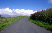 A239AW Quiet country road in northern Pennines, England