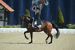 Meiresonne Delphine, (BEL), Wipsy v Heihof<br /> Qualification Grand Prix Special<br /> Horses & Dreams meets Denmark - Hagen 2016<br /> © Hippo Foto - Stefan Lafrentz