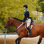 $1,000 USHJA Hunter Derby