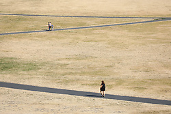 © Licensed to London News Pictures. 24/07/2018. London, UK. People walk through dried brown grass in Greenwich Park at the start of another hot day in London. Record temperatures are expected to continue throughout the week. Photo credit: Rob Pinney/LNP