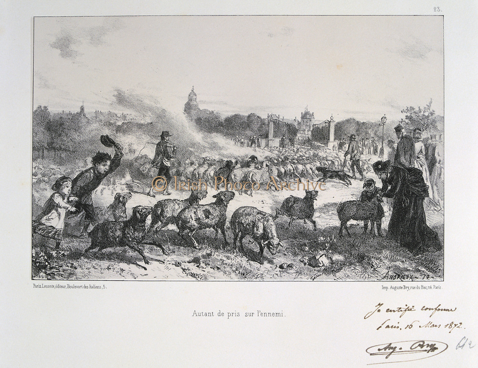 Franco-Prussian War 1870-1871: Driving away a flock of sheep to deny them falling into the hands of the Prussians.  From a series of lithographs  by Clement August Andrieux on the Gardes Nationales.