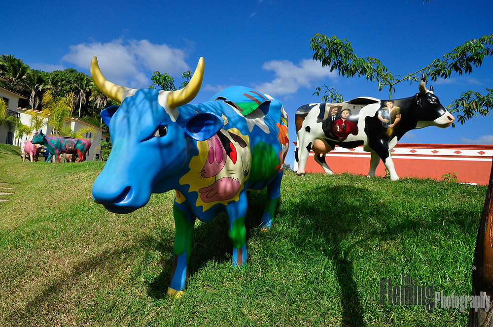 Art installation on the grounds of the hotel Hacienda San Pancho.