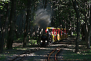 The Liliputbahn (miniature railways) through Vienna's Prater, hauled by an old steam engine.