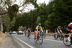 Anastasia Chursina (RUS) in the bunch on Stage 1 of 2020 Santos Women's Tour Down Under, a 116.3 km road race from Hahndorf to Macclesfield, Australia on January 16, 2020. Photo by Sean Robinson/velofocus.com