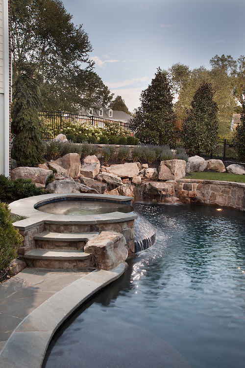 Back yard in ground pool