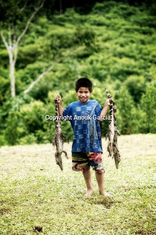 Crocodile, Jacare no rio gregorio.