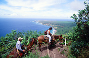 Molokai Mule Ride Lalaupapa, Molokai, Hawaii