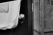 Théâtre NUITHONIE, les métiers de la scène, Bühnentechnik, Nuithonie, entrée de scène, Bühneneingang, Loge, les loges, habilleuse, Kostümbildnerin, Bühnenbildnerin