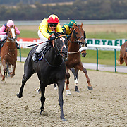 Lingfield 16th March 2013