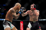 Jim Miller fights Thiago Alves during UFC 205 at Madison Square Garden in New York, New York on November 12, 2016.  (Cooper Neill for The Players Tribune)