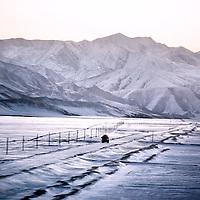 Tibetan Train landscapes